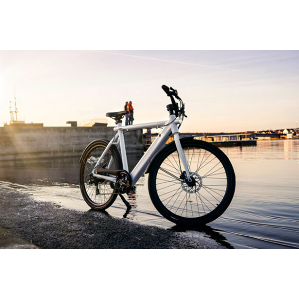 Affordable e-Bike